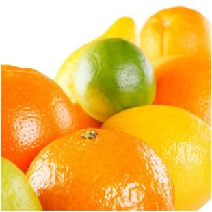 Cellules souches d'oranges